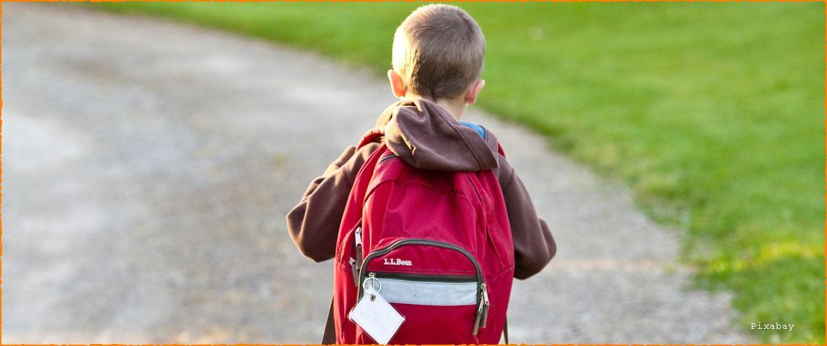 Nazaj oziroma ponovno naprej v šolo